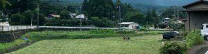 農地の管理