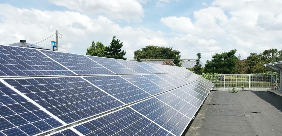 太陽光発電所の開発
