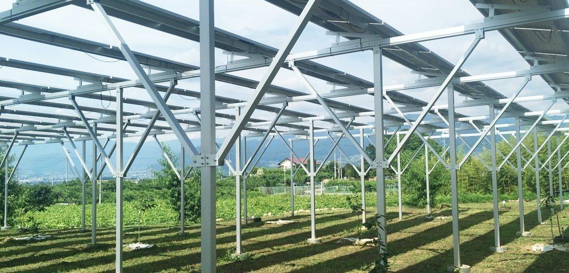 ソーラーシェアリングの開発